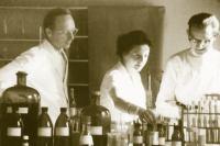 elisabeth-sigmund-wala-laboratorium